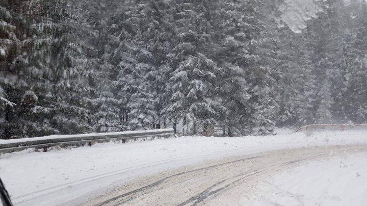 NINGE peste Prut. E Cod Galben de ninsori şi viscol în 26 de judeţe. La munte e ca în poveste (VIDEO)