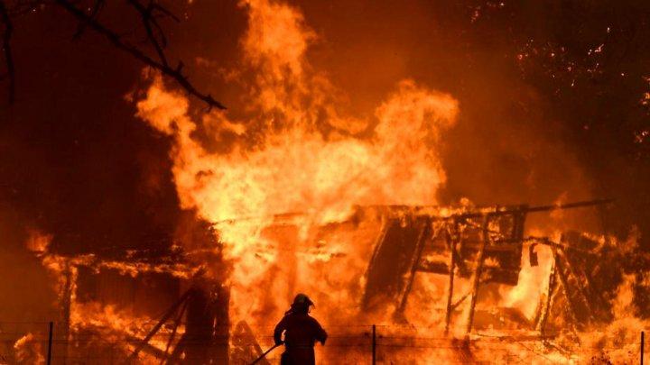 Ce vedete au făcut donaţii pentru pompierii din Australia care luptă cu incendiile devastatoare