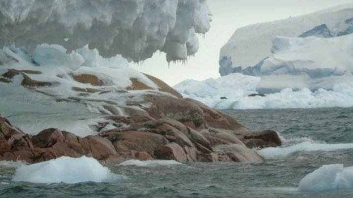Topirea gheţarilor a dus la apariţia unei noi insule în Antarctica