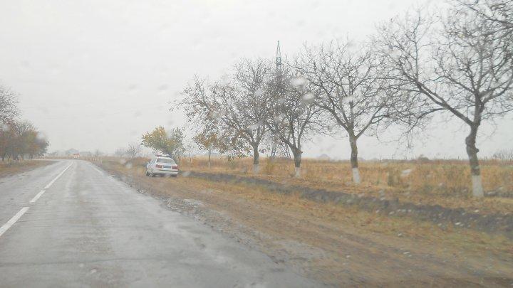 Rusia vinovată de încălcarea dreptului de proprietate a fermierilor din raionul Dubăsari, într-o nouă hotărâre a CtEDO