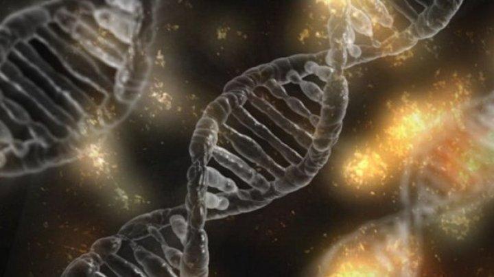 A fost descoperit modul în care mutaţiile conduc la apariţia celor mai multe cazuri de leucemie