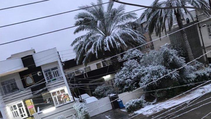 Zăpadă a făcut ravagii în nordul Iranului. Şapte persoane au murit