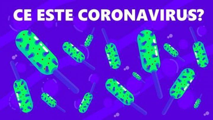 Cum să ne protejăm de coronavirusul de tip nou şi ce nu trebuie să facem. Recomandările specialiştilor moldoveni