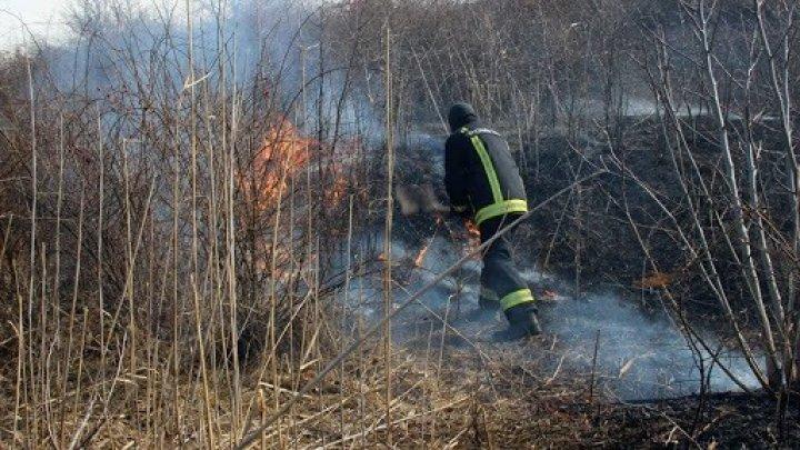 Mai multe incendii de vegetaţie au cuprins suprafeţe extinse pe teritoriul ţării