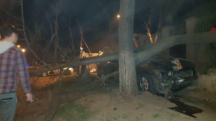 ACCIDENT DE GROAZĂ în Capitală. Un tânăr s-a izbit cu mașina într-un copac (FOTO/VIDEO)