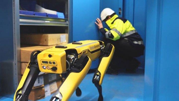 Britanicii vor înlocuirea imigranţilor din fabrici cu roboţi. Care este motivul