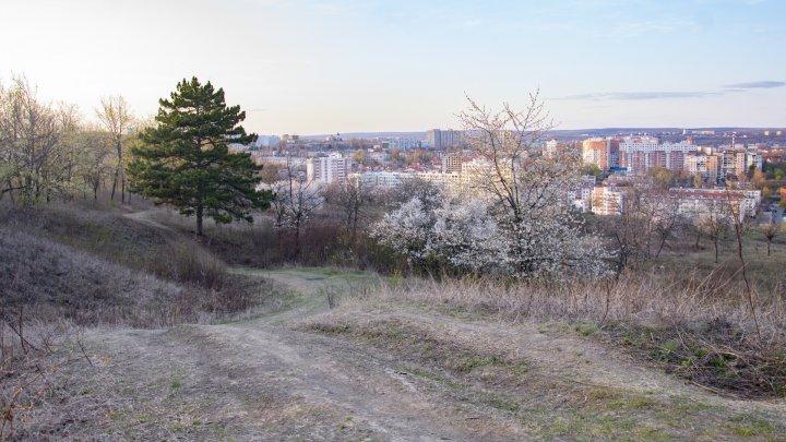 Chișinăul respriră! Pandemia de coronavirus elimină poluarea din oraș (FOTOREPORT)