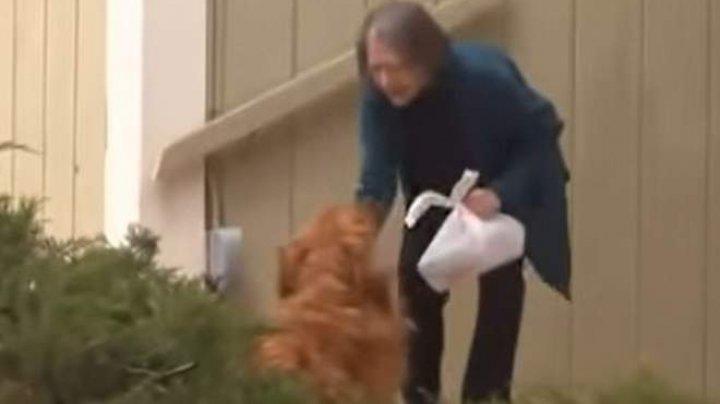 Gestul emoționant al unui câine pentru vecina sa aflată în izolare (VIDEO)