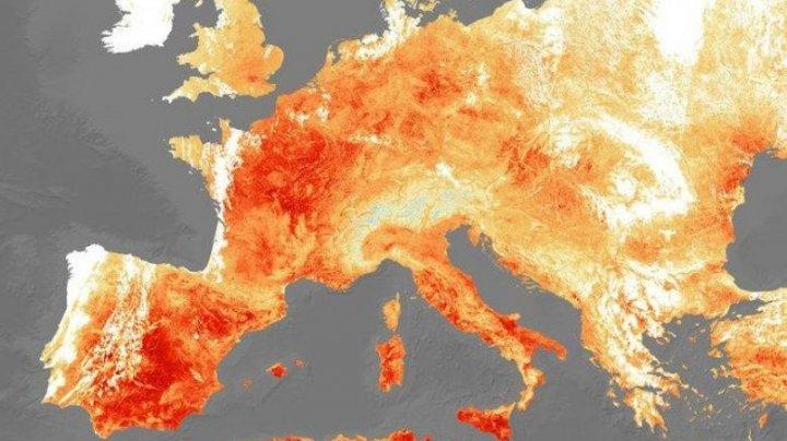 2019, cel mai călduros an din istoria măsurătorilor meteorologice din Europa