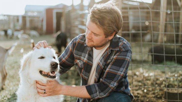 Coronavirus: Australienii adoptă animale de companie pentru a combate singurătatea izolării la domiciliu