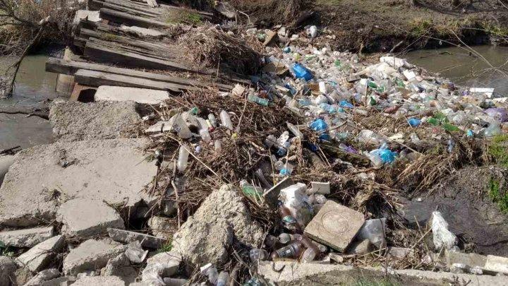 Bombă ecologică în Capitală. O gunoiște neautorizată, surprinsă în apropierea unei înterprinderi (FOTO)