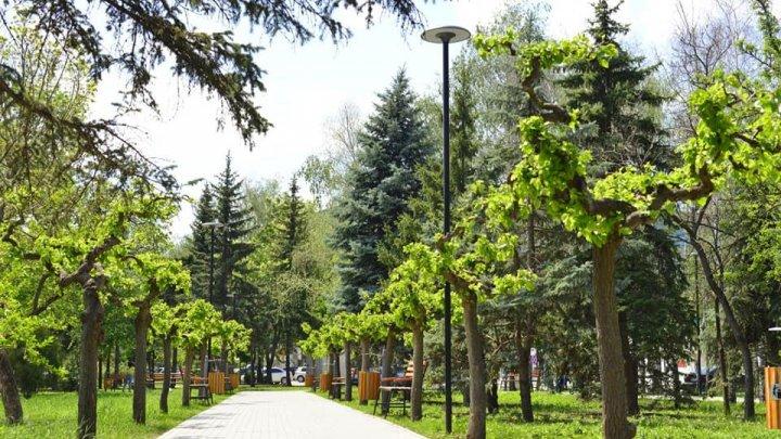 Scuarul Mezon din sectorul Râșcani a fost readus la viață (FOTO)