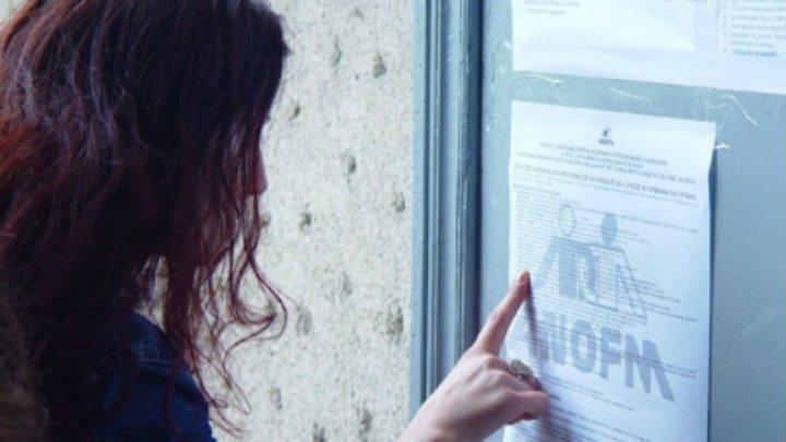 Cererile pentru obţinerea statutului de şomer ar putea fi depuse online