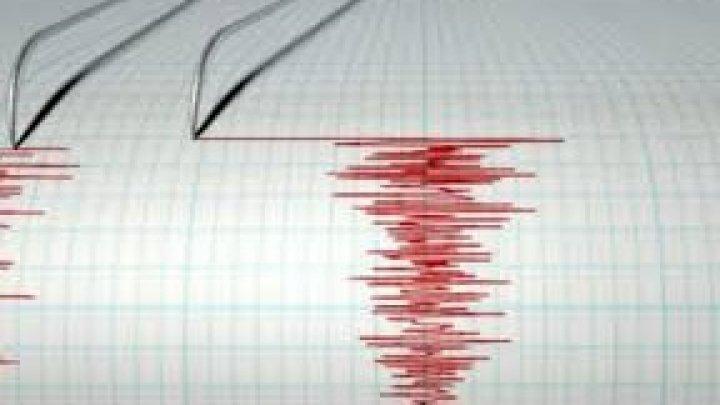 Cutremur cu magnitudinea 7,4 în Noua Zeelandă