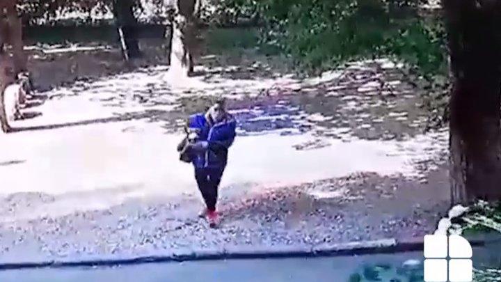 Dacă îi recunoști, anunță Poliția. Ce au făcut în plină zi o femeie și doi bărbați (VIDEO)