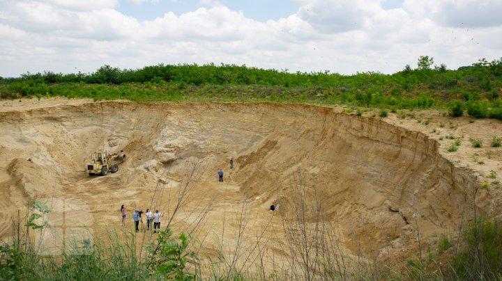 CRANII DE RINOCER LA HOGINEŞTI: Acestea au o vechime de peste 11 milioane de ani (FOTOREPORT)