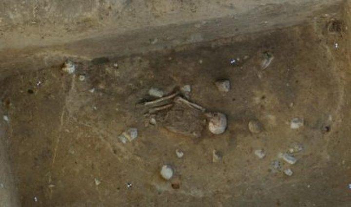 Un schelet de peste 4.000 de ani, descoperit în Germania