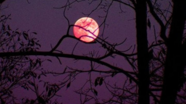 FENOMEN ASTRAL SPECTACULOS în următoarele zile. Când puteți vedea pe cer fabuloasa Lună Roz