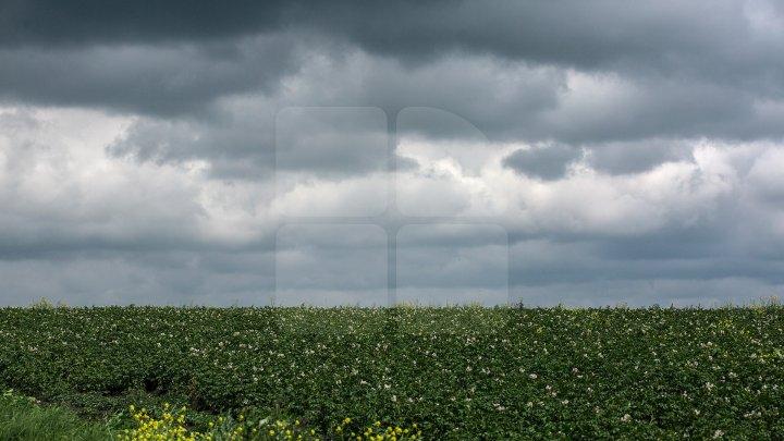 Cum va fi vremea mâine, 20 iulie, şi câte grade vor indica termometrele