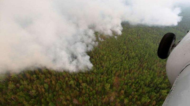 Temperaturile din Siberia au atins valori record în iunie. Incendiile se intensifică