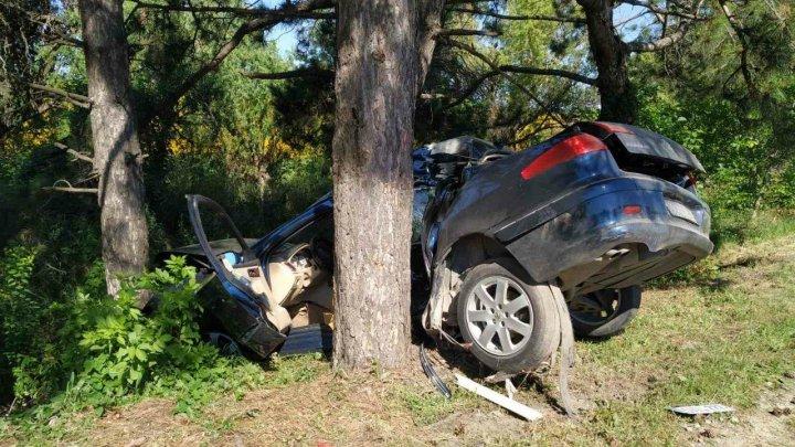 ACCIDENT GRAV în raionul Rîşcani. Un bărbat s-a izbit cu mașina într-un copac (FOTO)