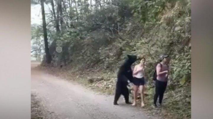 IMAGINI INCREDIBILE. Momentul în care un urs a cuprins o turistă în timp ce aceasta îşi făcea un selfie (VIDEO)