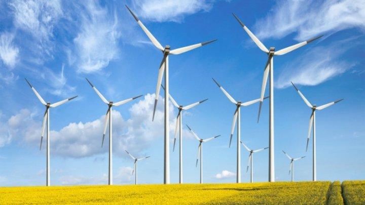 STUDIU: Energiile regenerabile pot înlocui cărbunele în Europa Centrală şi de Est