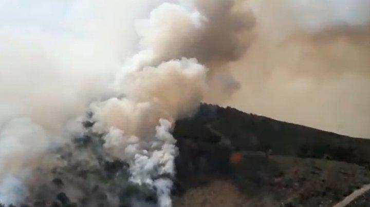 Incendii de vegetație în Portugalia. O persoană a murit, iar altele șase au fost rănite
