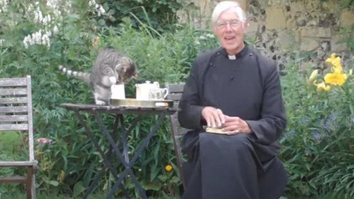 O pisică apare în cadru în timpul unei slujbe online și fură laptele de pe masă (VIDEO)