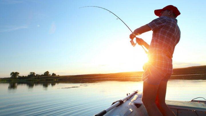 Un pescar australian, ucis de un pește care i-a sărit în barcă
