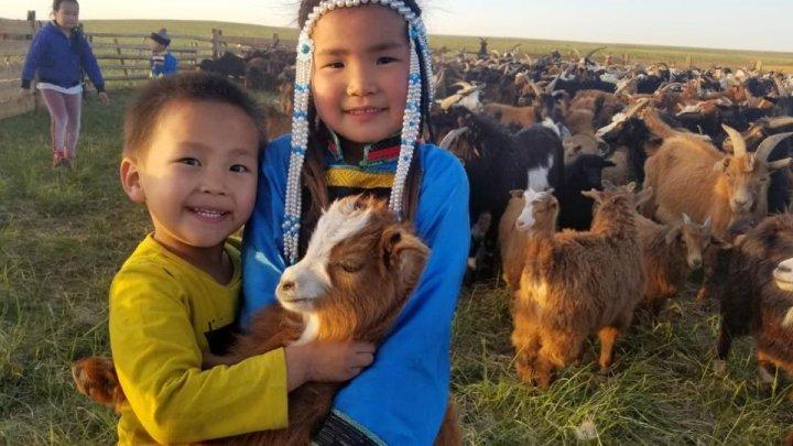 Un sat din Mongolia, plasat în carantină după ce un localnic a murit de ciumă bubonică