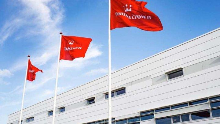 Un abator din Danemarca opreşte temporar activitatea din cauza unui focar de coronavirus