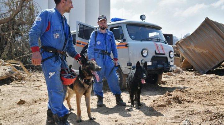 Interpol va trimite o echipă de experți la locul exploziei din Beirut