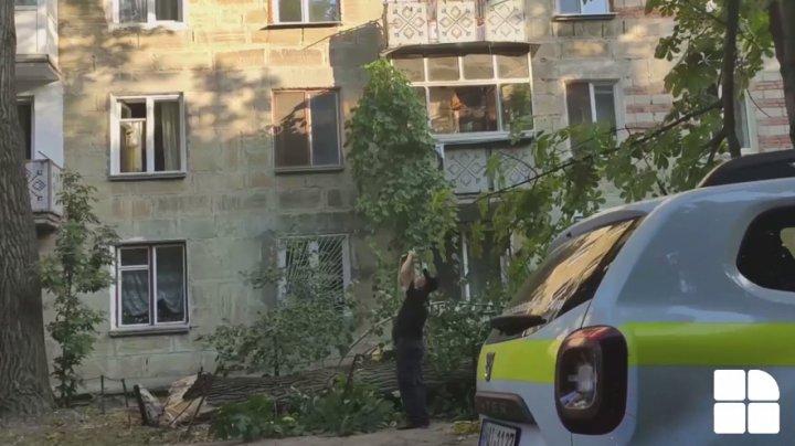 O creangă imensă a căzut dintr-un copac în sectorul Botanica. O femeie, transportată la spital (VIDEO)