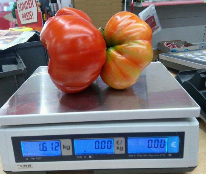 Un grădinar a stabilit un nou record mondial după ce a cultivat legume uriaşe (FOTO)