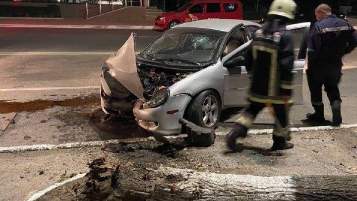 Un șofer care circula cu viteză a făcut PRĂPĂD la Hîncești. A doborât cu maşina un copac și a fugit (FOTO)