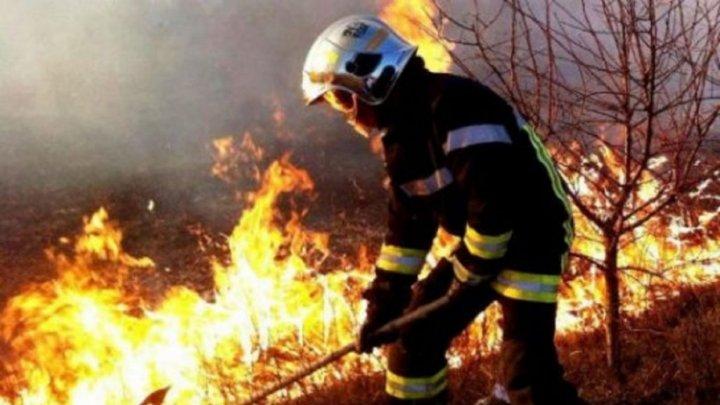 Zi de foc pentru pompieri. În ultimele 24 de ore, angajații IGSU au intervenit pentru a stinge 67 focare de ardere