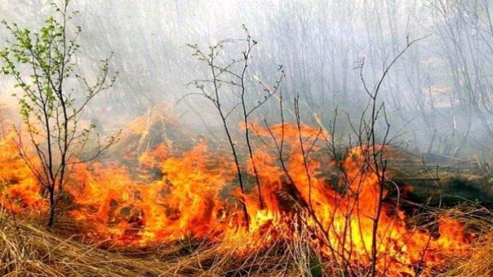 Moldova, în flăcări. 26 de incendii de vegetație în doar 24 de ore