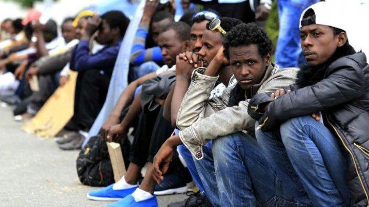 Germania confirmă că va primi peste o mie de migranţi din Grecia