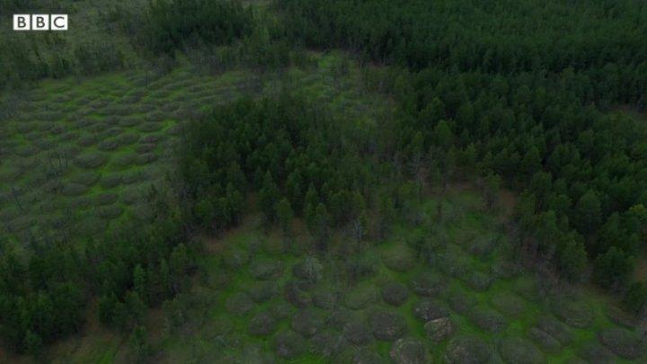 """După craterele spectaculoase din Siberia, acum au apărut o mulțime de """"cocoașe"""" bizare (VIDEO)"""