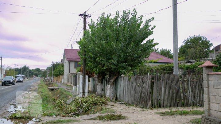 Cum arată satul Boşcana după distrugerile provocate de furtuna de joi seara (FOTOREPORT)