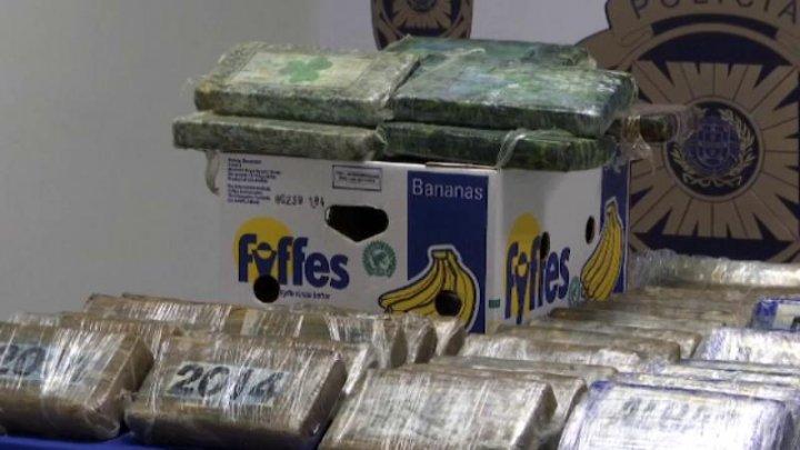 Trei tone de cocaină, ascunse printre banane. Unde urmau să ajungă
