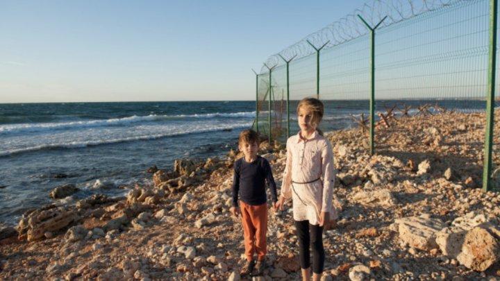 Grecia anunță că ridică un gard la frontiera cu Turcia