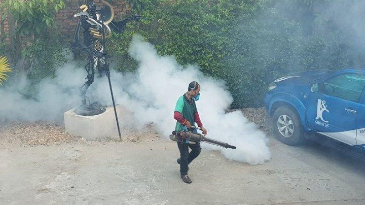 Cazurile de febră dengue continuă să se înmulţească în Laos
