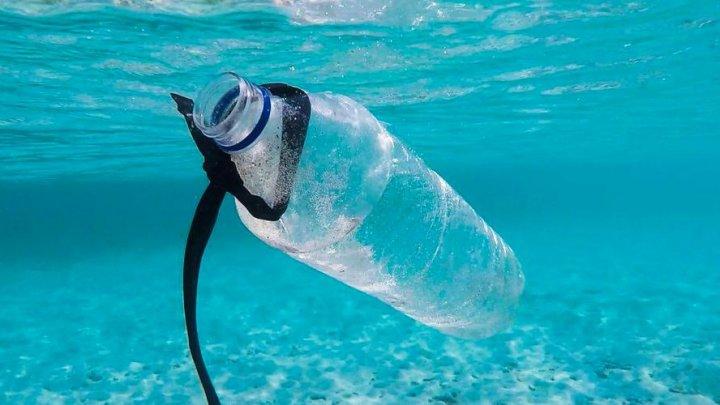 Aproximativ 15 milioane de tone de microplastice se află pe fundul mărilor și oceanelor