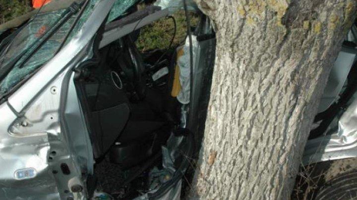 ACCIDENT DE GROAZĂ în raionul Leova. Un tânăr a murit, după ce a ajuns cu mașina într-un copac