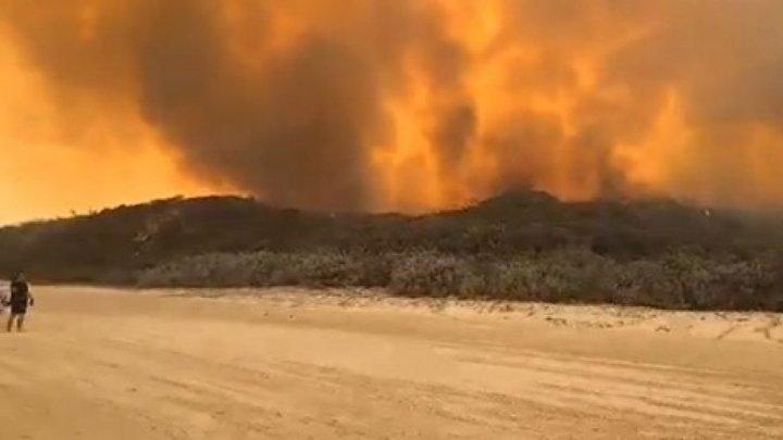 Incendiu devastator în Australia. Insula Fraser, inclusă în lista patrimoniului mondial UNESCO, este mistuită de flăcări