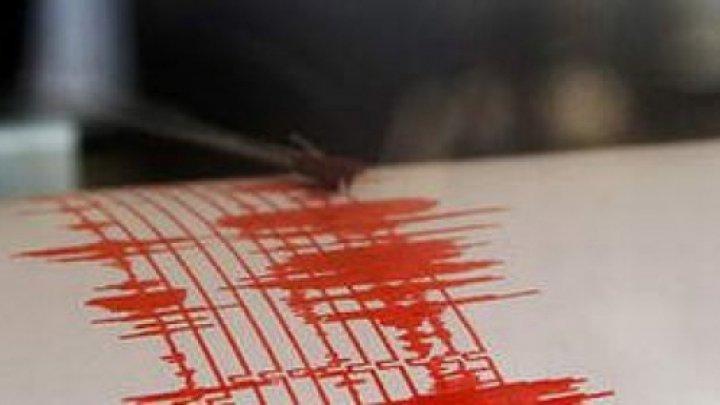 Cutremur cu magnitudinea 3,1 vineri dimineaţa, în judeţul Vrancea