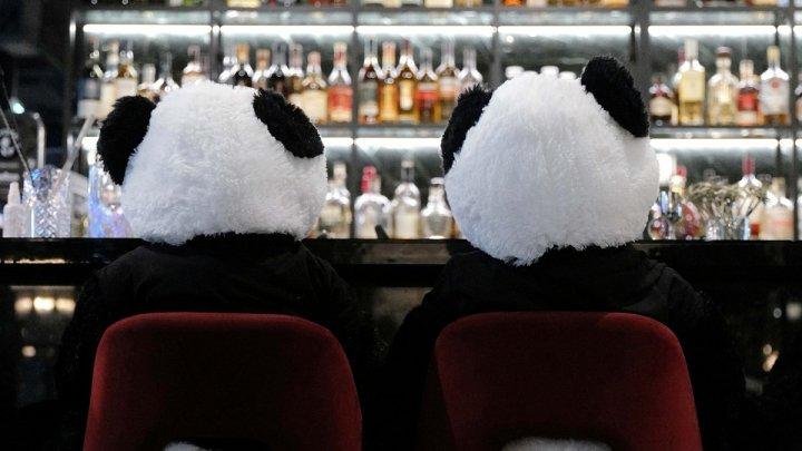 Protestul unui proprietar de restaurant: Urşi panda de pluş în loc de vizitatori