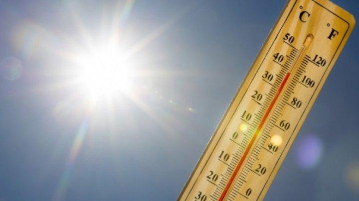 Avertizare OMM: 2020, al doilea cel mai călduros an din istoria măsurătorilor meteorologice